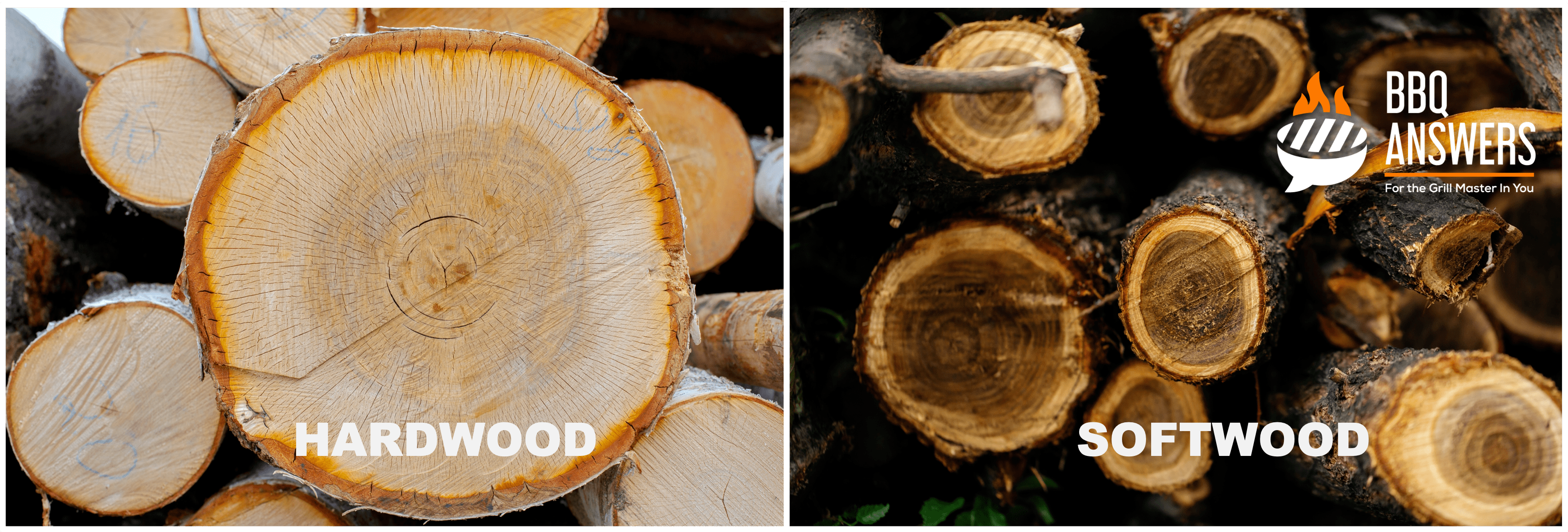 Softwood vs Hardwood | Guide to BBQ Wood Selection | BBQanswers