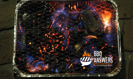 Are Disposable Barbecue Grills Worth it?