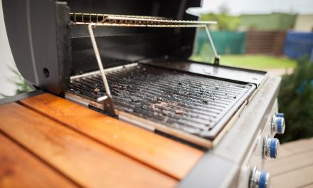 What is BBQ Grill Mold? Causes and Remedies